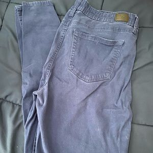 Celebrity Pink Blue pants